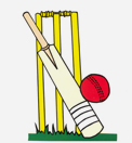 Custom Cricket Goods Astrakhan