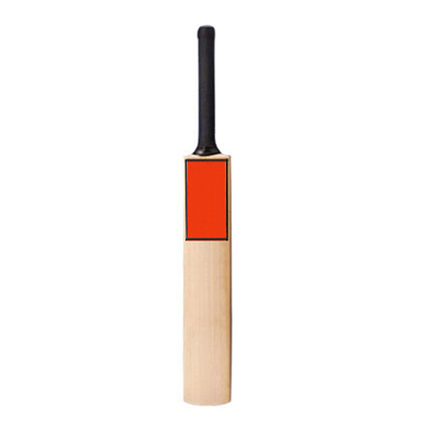 Custom Cheap Cricket Bats Manufacturers Fremont