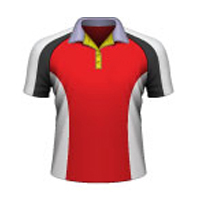 T 20 Cut And Sew Cricket Shirts Wholesaler