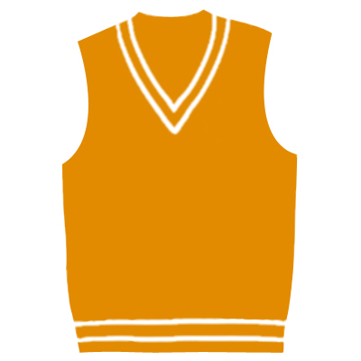 V Neck Cricket Vests Wholesaler
