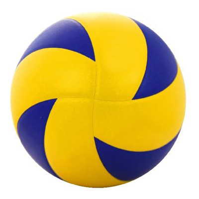 Custom Volleyballs Manufacturers North Korea