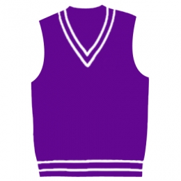 Cricket Team Vests Manufacturers in Denmark
