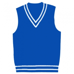 V Neck Cricket Sweater Manufacturers in Denmark