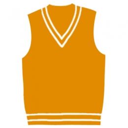V Neck Cricket Vests Manufacturers